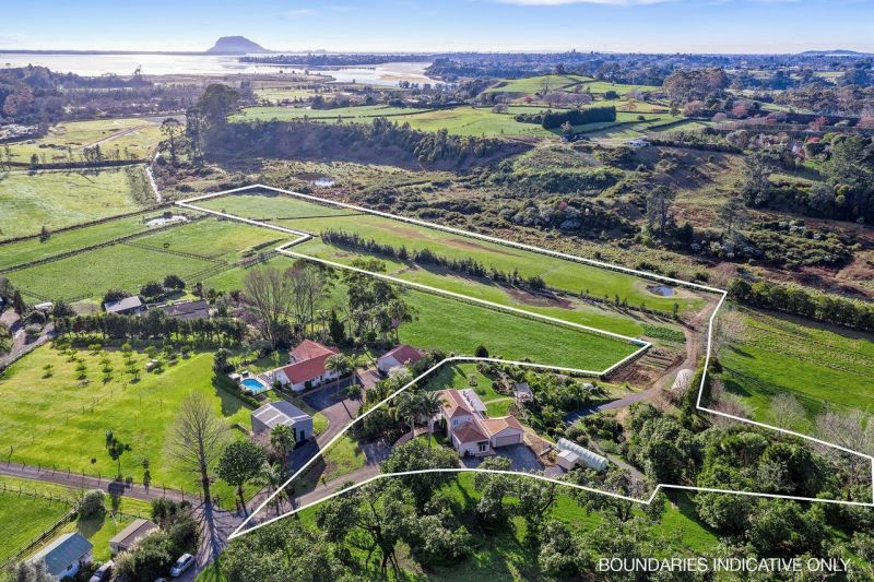 Lifestyle paradise with comfy house on 3.2 ha close to Tauranga
